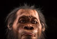 """撼动""""人类""""的史前新人种"""