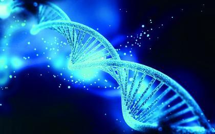 微小的遗传差异就可能对身体特征造成很大影响.jpg