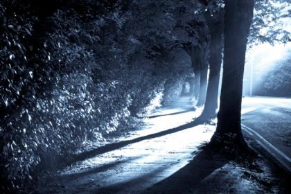 怪异的平静感——绿野仙踪因子.jpg