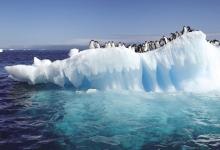探秘极地冰山世界
