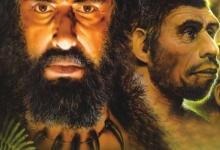 七大进化谣言