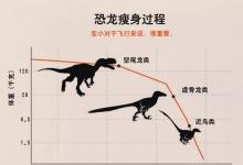恐龙是如何变成鸟的?