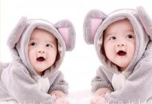 并不神秘的双胞胎效应
