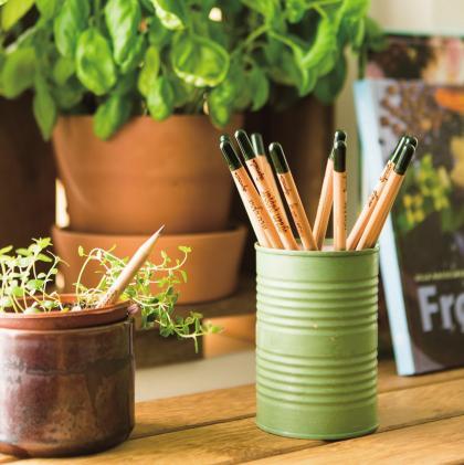 Sprout牌铅笔末端有一粒种子,可以插入花盆发芽开花.jpg