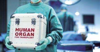 目前,捐赠的器官只能做到短暂的保存,如不能及时移植,则会浪费掉.jpg