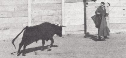 就在公牛要撞上他的瞬间,德尔加多按下了能够制止公牛的遥控按钮.jpg
