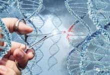 我的基因我能做主吗?