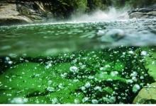 亚马孙雨林深处的神秘沸腾河