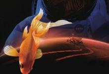 地外生存的法宝是一条鱼?