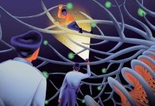 DNA,无所不能:基因之网,疏而不漏