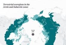 南北两极有何大大不同之处?